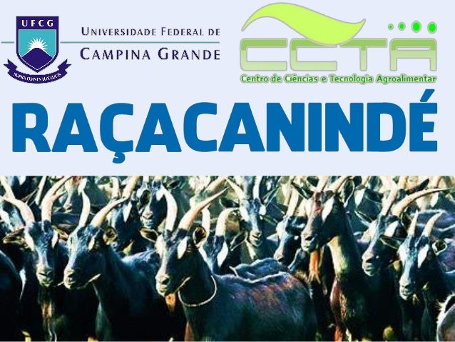 Zootecnia Geral - Raça Canindé - FACEBODE