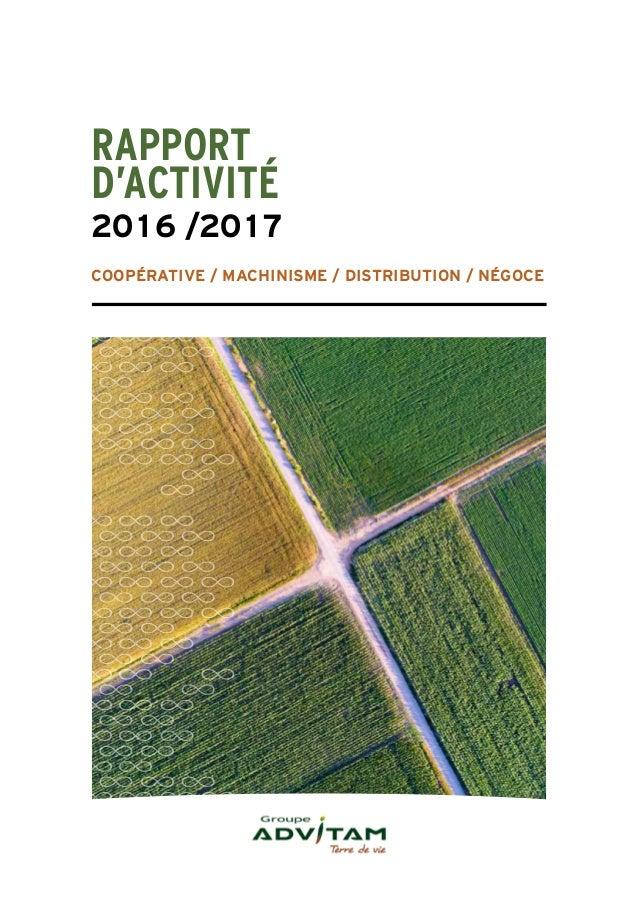 Rapport Dactivit 2016
