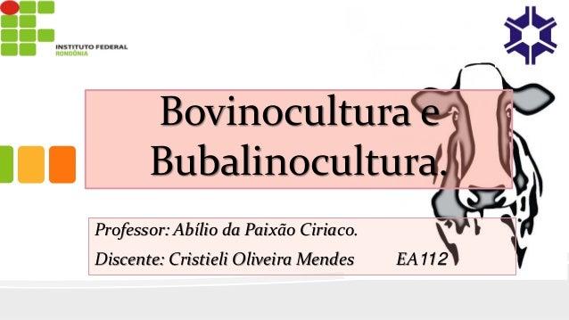 Bovinocultura e Bubalinocultura. Professor: Abílio da Paixão Ciriaco. Discente: Cristieli Oliveira Mendes EA112