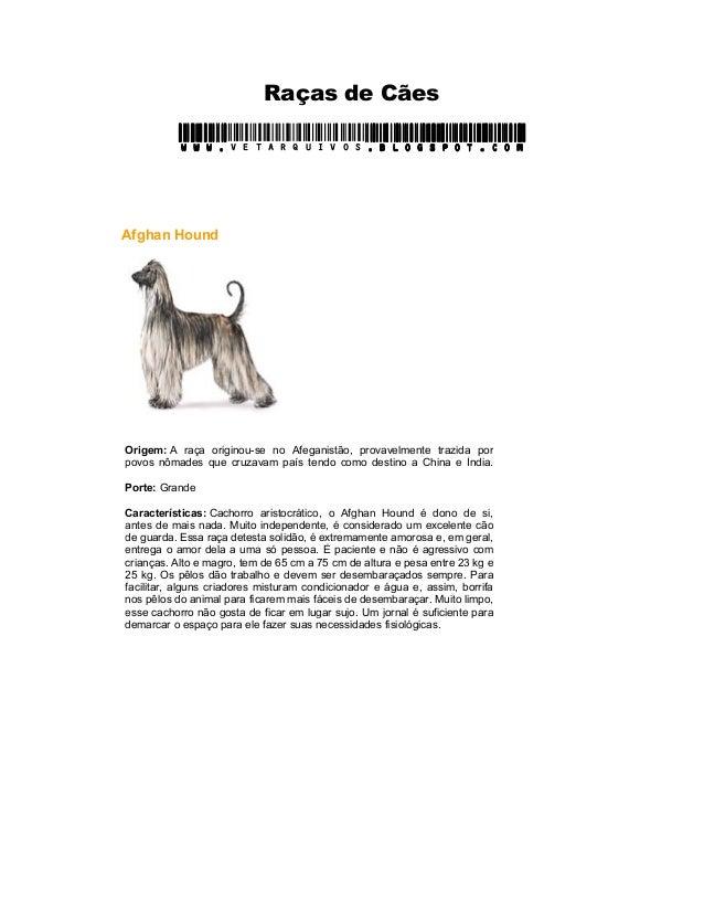 Raças de Cães www.www.www.www.vetarquivos.blogspot.com.blogspot.com.blogspot.com.blogspot.com Afghan Hound Origem: A raça ...