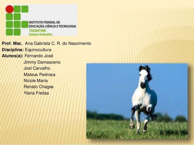 Prof. Msc. Ana Gabriela C. R. do Nascimento  Disciplina: Equinocultura  Alunos(a): Fernando José  Jimmy Damasceno  Joel Ca...