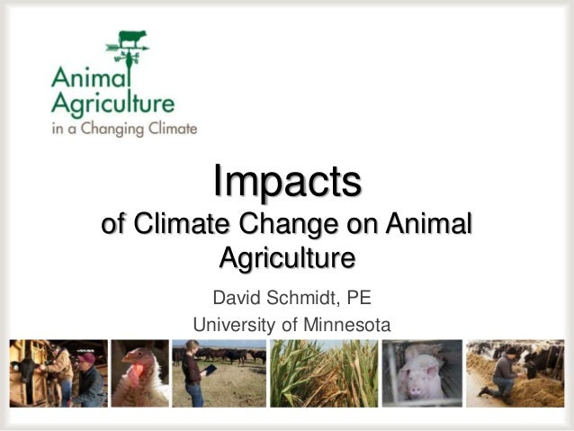 Impacts of Climate Change on Animal Agriculture David Schmidt, PE University of Minnesota