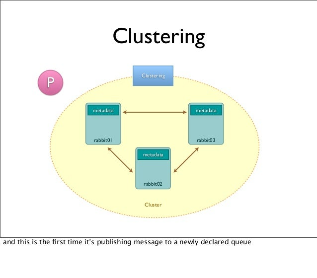 metadata Clustering Clustering metadata metadata rabbit01 rabbit03 rabbit02 Cluster P and this is the first time it's publi...