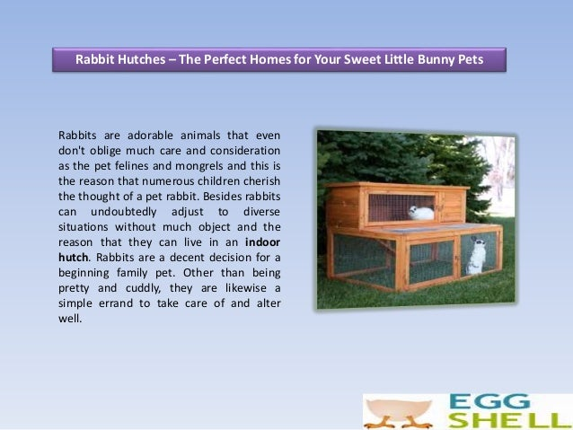 Rabbit Hutches – The Perfect Homes for Your Sweet Little Bunny Pets Rabbits are adorable animals that even don't oblige mu...