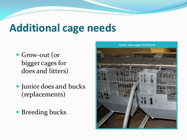 Additional cage needs                           Grow-out cages in France  Grow-out (or  bigger cages for  does and litter...