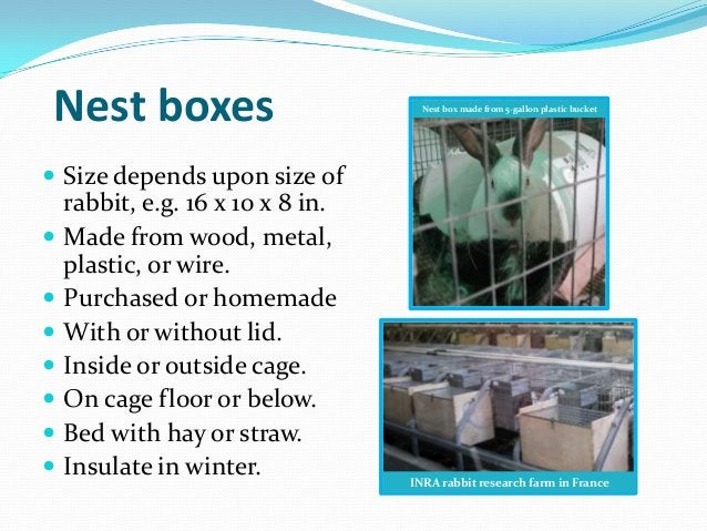 Nest boxes                           Nest box made from 5-gallon plastic bucket Size depends upon size of    rabbit, e.g....