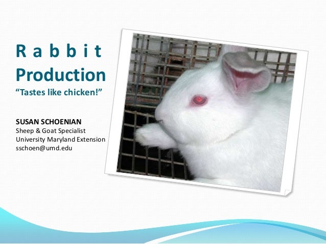 "RabbitProduction""Tastes like chicken!""SUSAN SCHOENIANSheep & Goat SpecialistUniversity Maryland Extensionsschoen@umd.edu"
