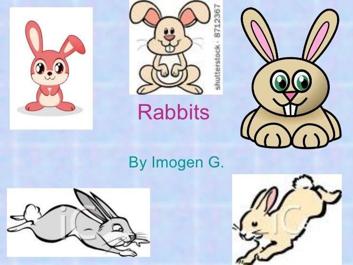 RabbitsBy Imogen G.
