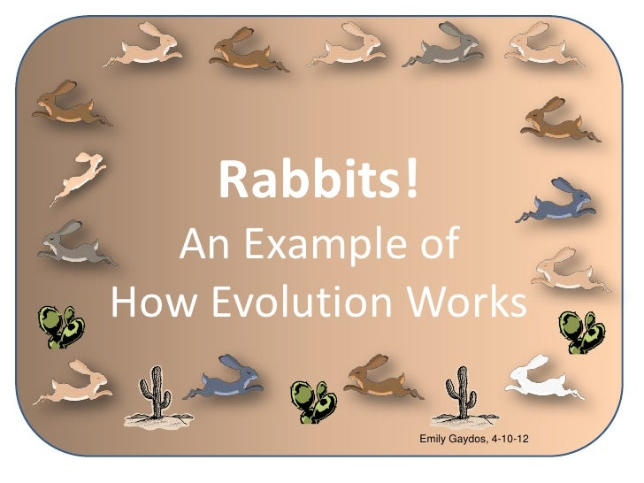 Rabbits!  An Example ofHow Evolution Works              Emily Gaydos, 4-10-12