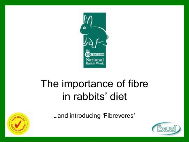 The importance of fibre in rabbits' diet …and introducing 'Fibrevores'