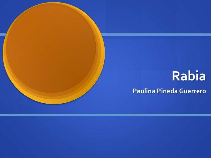 RabiaPaulina Pineda Guerrero
