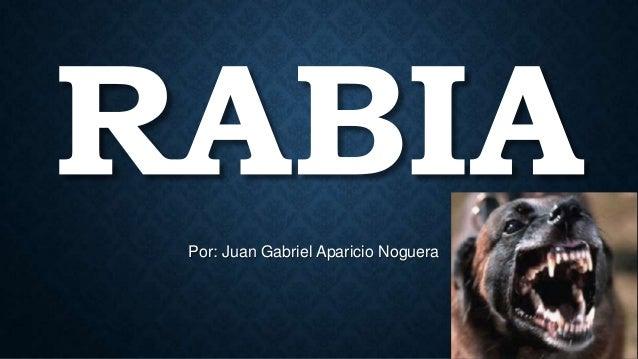 Por: Juan Gabriel Aparicio Noguera