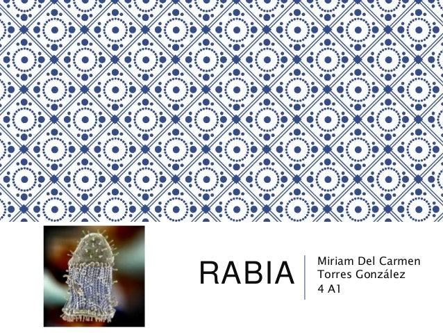 RABIA Miriam Del Carmen Torres González 4 A1
