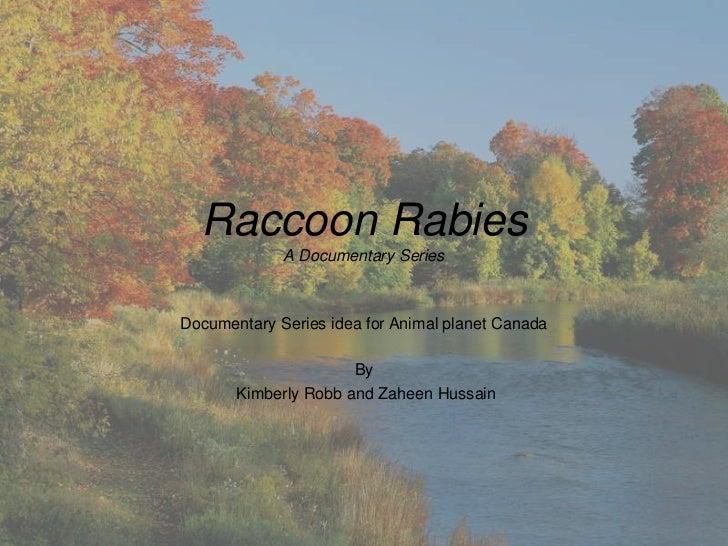Raccoon Rabies             A Documentary SeriesDocumentary Series idea for Animal planet Canada                      By   ...