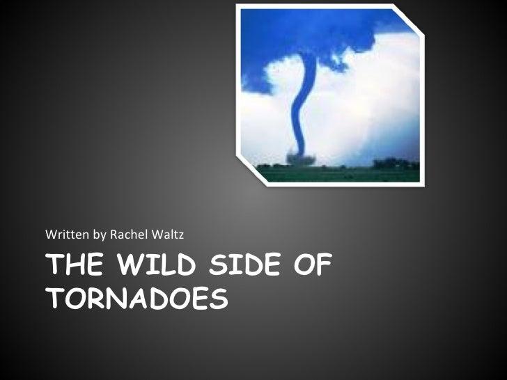 THE WILD SIDE OF TORNADOES <ul><li>Written by Rachel Waltz </li></ul>