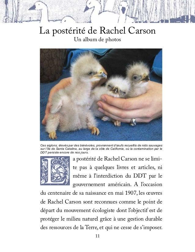 A partir du haut: le pygargue, ou aigle à tête blan-che, n'est plus une espèce en voie d'extinction;Rachel Carson feuill...