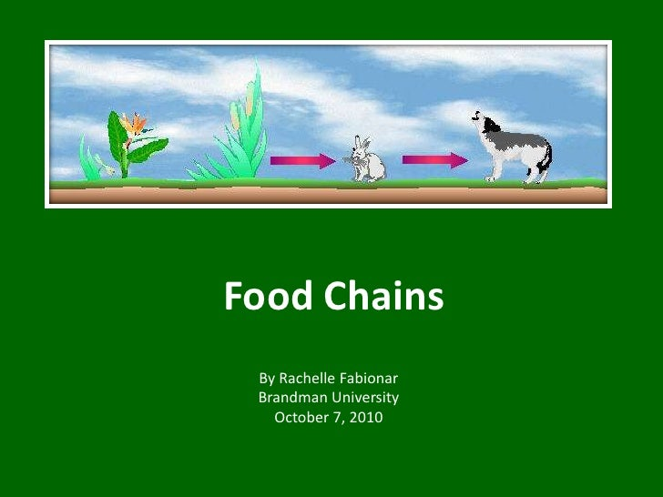 Food Chains<br />By Rachelle Fabionar<br />Brandman University<br />October 7, 2010<br />