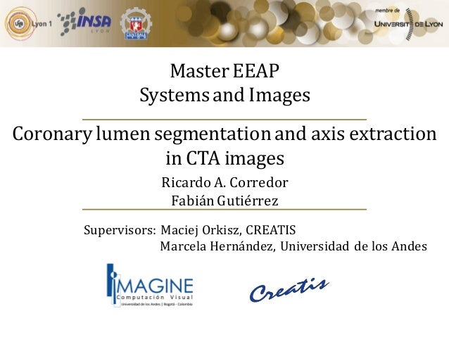 Master EEAP Systems and Images Coronary lumen segmentation and axis extraction in CTA images Supervisors: Maciej Orkisz, C...