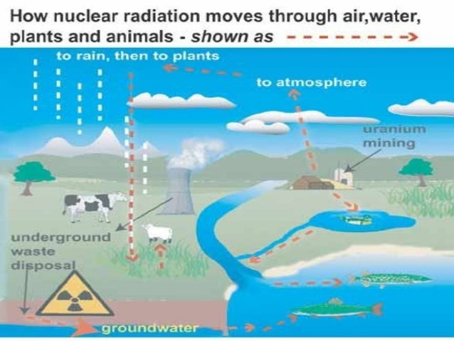 an overview of the types of dangerous nuclear waste Introduction to radiation radiation is  that is, it tells how long that species  may present a danger to human health and the environment  there are four  general categories of radioactive wastes: low level, high level, transuranic and  mixed.