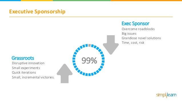 Executive Sponsorship Overcome roadblocks Big issues Grandiose novel solutions Time, cost, risk Exec Sponsor Disruptive in...
