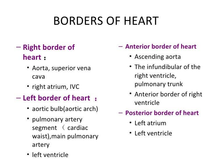 BORDERS OF HEART <ul><ul><li>Right border of heart : </li></ul></ul><ul><ul><ul><li>Aorta, superior vena cava </li></ul></...
