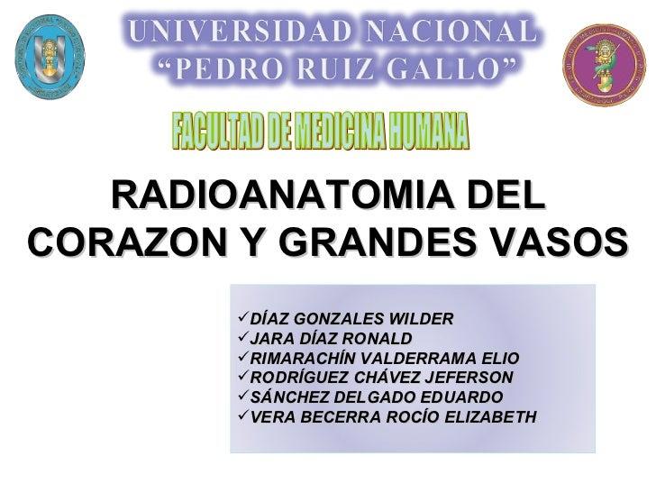 RADIOANATOMIA DEL CORAZON Y GRANDES VASOS FACULTAD DE MEDICINA HUMANA <ul><li>DÍAZ GONZALES WILDER </li></ul><ul><li>JARA ...