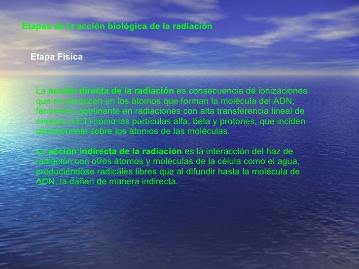 Etapas de la acción biológica de la radiación  Etapa Física  La  acción directa de la radiación  es consecuencia de ioniza...