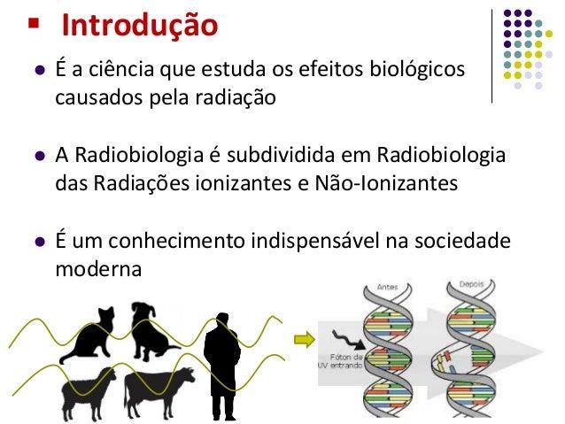 Radiobiologia seminario Slide 2