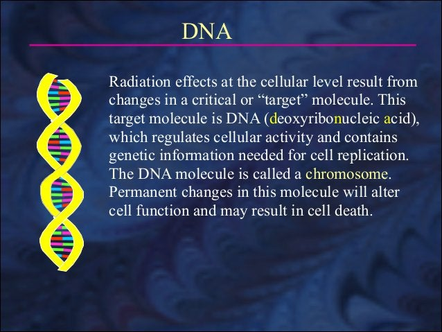 """DNA Radiation effects at the cellular level result from changes in a critical or """"target"""" molecule. This target molecule i..."""