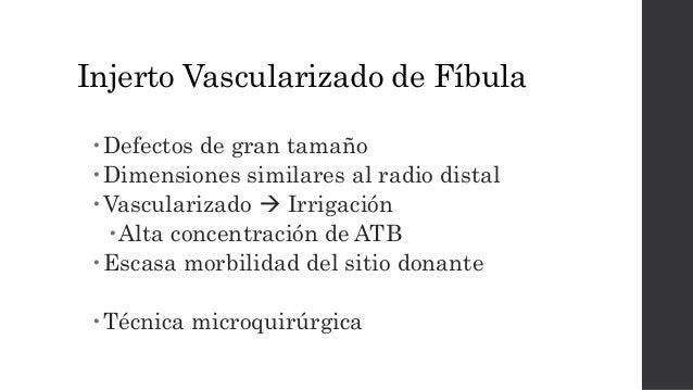 • 10 pacientes, 3 con infección del radio distal • Técnica  Ulna distal con pedículo de flujo anterógrado de la arteria i...