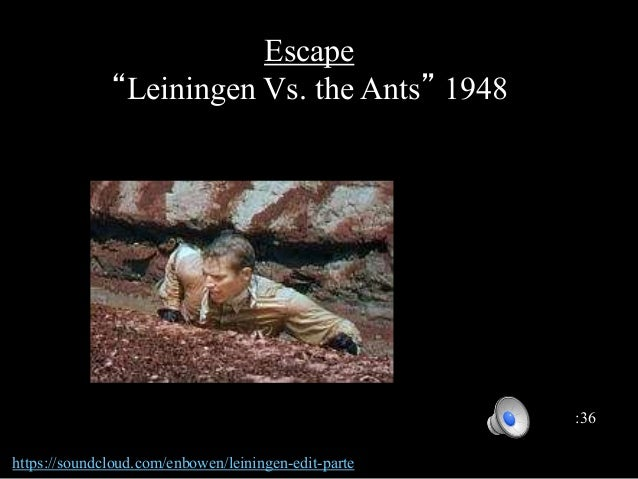 Free Literature Flashcards about Leingen vs. The Ants