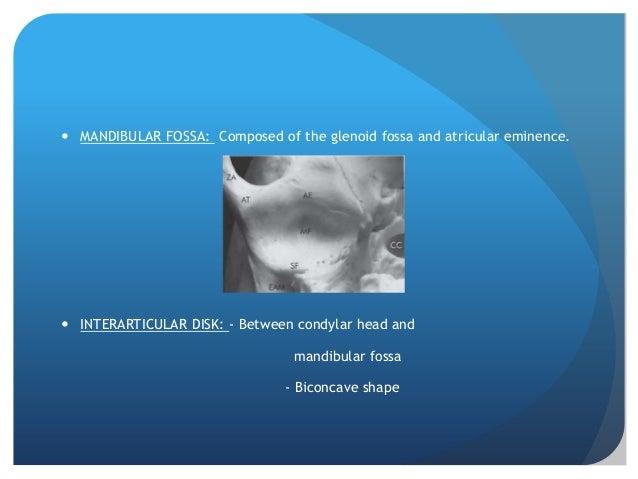  MANDIBULAR FOSSA: Composed of the glenoid fossa and atricular eminence. INTERARTICULAR DISK: - Between condylar head an...