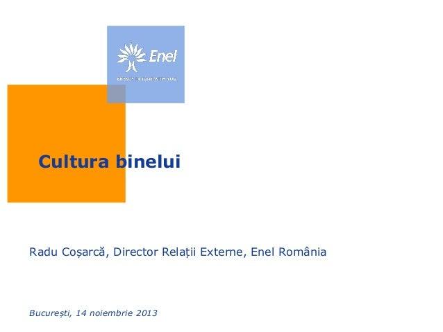 Cultura binelui  Radu Coșarcă, Director Relații Externe, Enel România  București, 14 noiembrie 2013