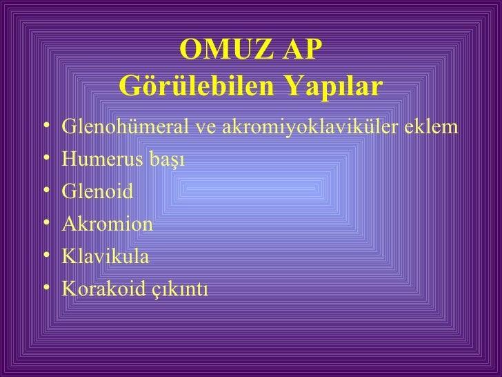 OMUZ AP Görülebilen Yapılar <ul><li>Glenohümeral ve akromiyoklaviküler eklem </li></ul><ul><li>Humerus başı </li></ul><ul>...