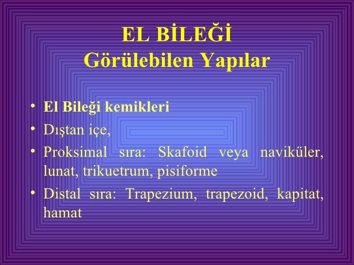 EL BİLEĞİ Görülebilen Yapılar <ul><li>El Bileği kemikleri </li></ul><ul><li>Dıştan içe,  </li></ul><ul><li>Proksimal sıra:...