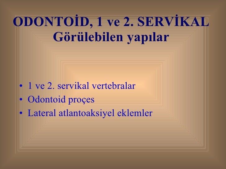 ODONTOİD, 1 ve 2. SERVİKAL Görülebilen yapılar <ul><li>1 ve 2. servikal vertebralar </li></ul><ul><li>Odontoid proçes </li...