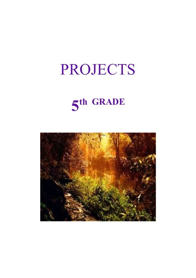 PROJECTS 5  th GRADE