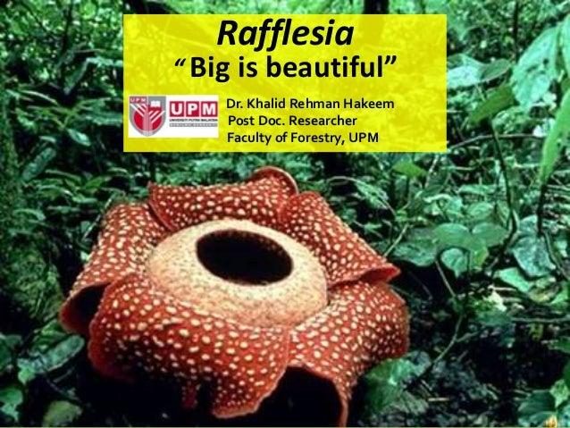 "Rafflesia"" Big is beautiful""    Dr. Khalid Rehman Hakeem    Post Doc. Researcher    Faculty of Forestry, UPM"
