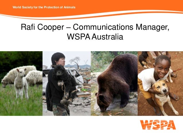 World Society for the Protection of Animals     Rafi Cooper – Communications Manager,                 WSPA Australia