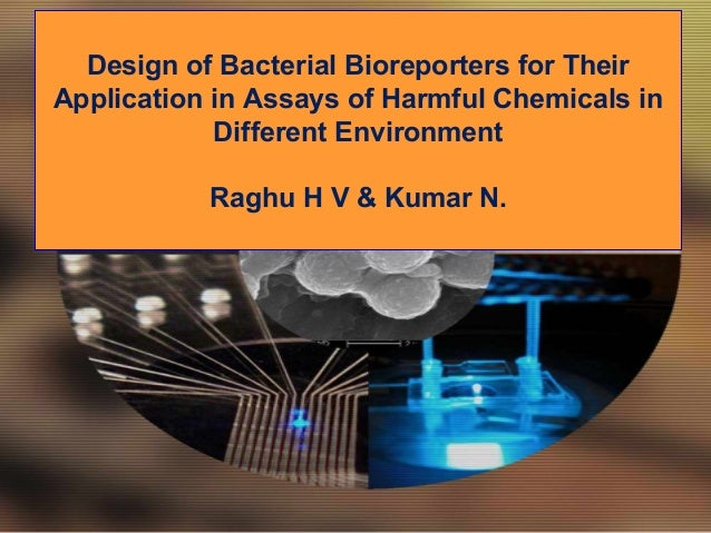 Design of Bacterial Bioreporters for TheirApplication in Assays of Harmful Chemicals in            Different Environment  ...
