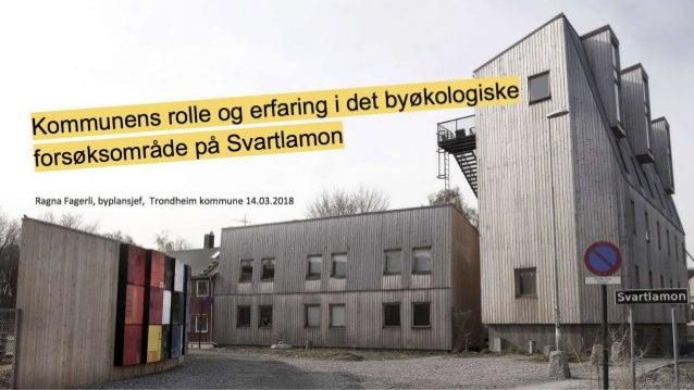 Ragna Fagerli - Drammenskonferansen 2018