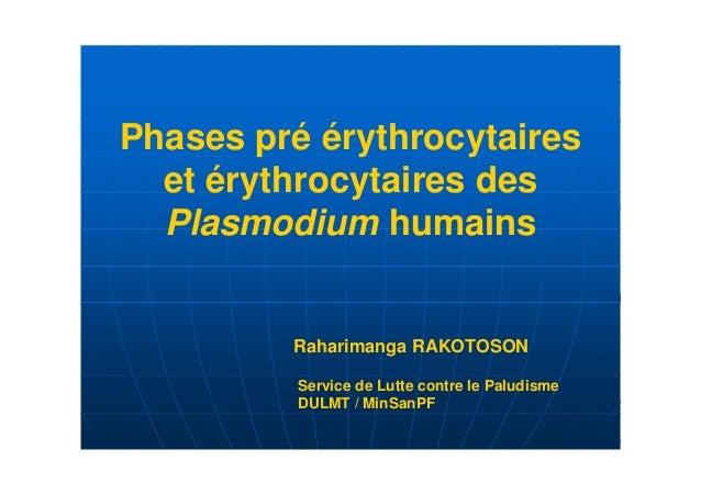 Phases pré érythrocytaires  et érythrocytaires des  Plasmodium humains         Raharimanga RAKOTOSON          Service de L...