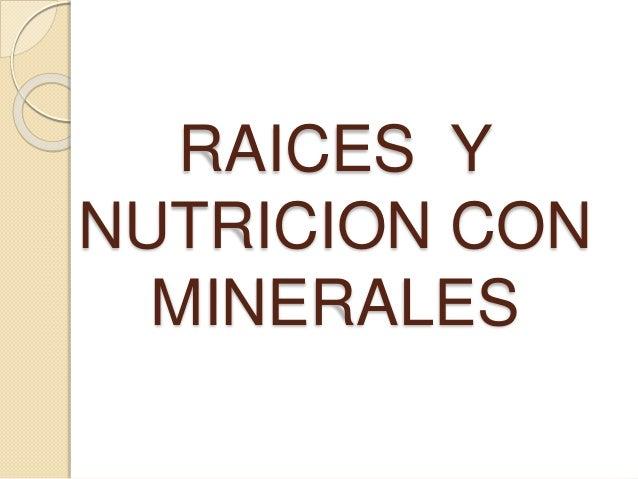 RAICES Y NUTRICION CON MINERALES