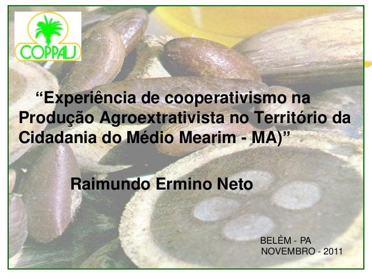 """""""Experiência de cooperativismo naProdução Agroextrativista no Território daCidadania do Médio Mearim - MA)""""      Raimundo ..."""