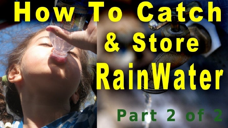 Part 2 - How To Catch & Store Rainwater