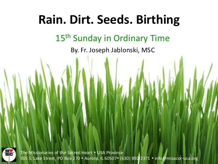 Rain. Dirt. Seeds. Birthing<br />15th Sunday in Ordinary Time<br />By. Fr. Joseph Jablonski, MSC<br />The Missionaries of ...