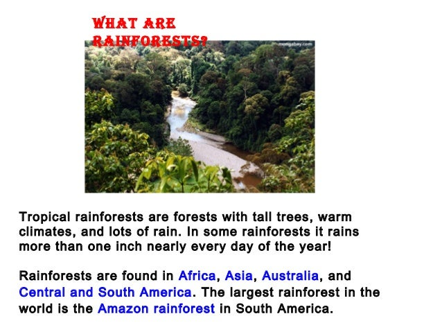 WHAT ARERAINFORESTS?Tropical rainforests are forests with tall trees, warmclimates, and lots of rain. In some rainforests ...
