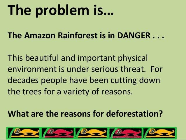 Rainforests - The Amazon Rainforest