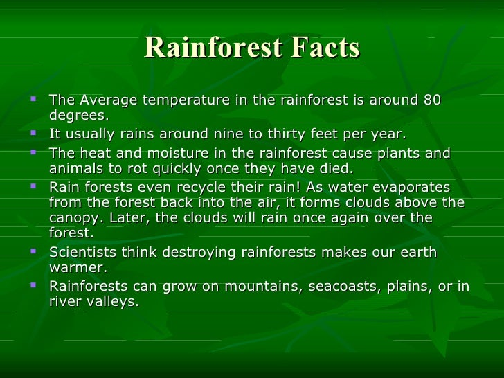 Rainforest And Global Warming