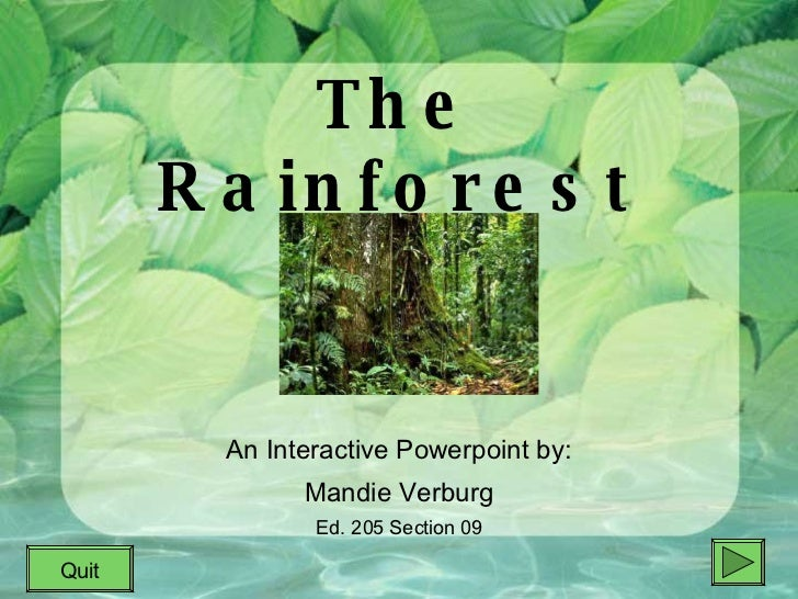 The Rainforest An Interactive Powerpoint by: Mandie Verburg Ed. 205 Section 09 Quit